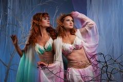 Duas mulheres do duende que esperam algo Imagens de Stock