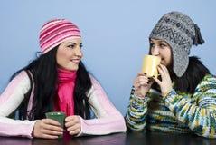 Duas mulheres dos amigos apreciam uma conversação imagem de stock