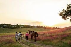 Duas mulheres e dois cavalos exteriores na natureza feliz do por do sol do verão junto Foto de Stock Royalty Free