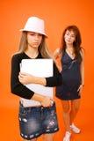 Duas mulheres e um portátil 5   fotografia de stock