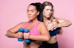 Duas mulheres gordas que exercitam com pesos Imagens de Stock Royalty Free