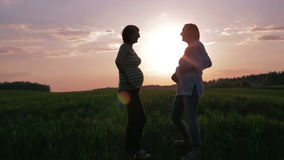 Duas mulheres gravidas que falam uma conversação no por do sol vídeos de arquivo