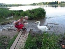 Duas mulheres louras novas comunicam-se com a cisne branca imagem de stock royalty free