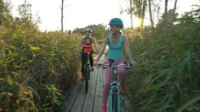Duas mulheres montam bicicletas em uma fuga ecológica de madeira entre os juncos filme