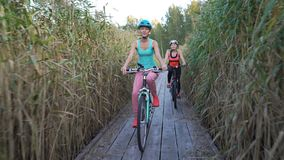 Duas mulheres montam bicicletas em uma fuga ecológica de madeira entre os juncos video estoque