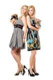 Duas mulheres novas de sorriso com cães fotografia de stock royalty free