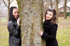 Duas mulheres por uma árvore Fotografia de Stock Royalty Free