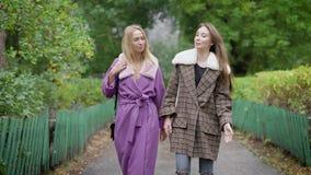 Duas mulheres que alegres os amigos estão vestindo o revestimento morno estão andando no dia do outono na aleia no parque e na co vídeos de arquivo