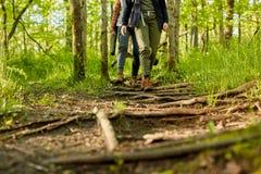 Duas mulheres que caminham ao longo de um passeio da floresta Foto de Stock
