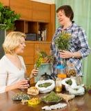 Duas mulheres que fabricam cerveja a tisana Foto de Stock
