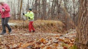 Duas mulheres superiores no parque do outono têm o treinamento - nordic que anda entre as folhas amarelas filme