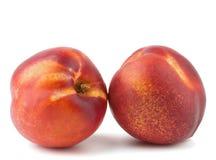 Duas nectarina maduras fotografia de stock royalty free
