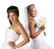 Duas noivas bonitas Foto de Stock