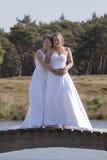 Duas noivas na ponte de madeira contra o fundo do céu azul Fotografia de Stock Royalty Free