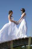 Duas noivas nos vestidos brancos levantam na ponte de madeira na floresta em s Imagens de Stock