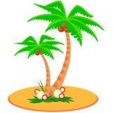 Duas palmeiras tropicais ilustração do vetor