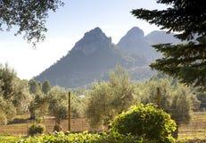 Duas partes superiores da montanha Fotografia de Stock