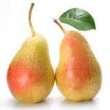 Duas peras apetitosas com uma folha. Imagens de Stock Royalty Free