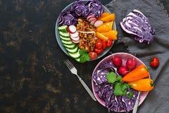 Duas placas com legumes frescos e o peito de frango cozido em um fundo escuro, vista superior Buda Vovl Vista superior, espaço pa Fotos de Stock