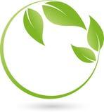 Duas plantas, folhas, bem-estar e logotipo naturopathic ilustração royalty free