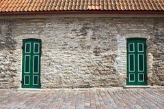 Duas portas verdes Imagens de Stock Royalty Free