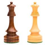 Duas rainhas da xadrez Imagem de Stock Royalty Free
