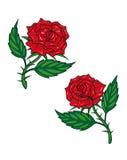 Duas rosas vermelhas dos desenhos animados Fotografia de Stock Royalty Free