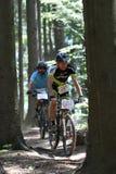 Duathlon - MTB na floresta Imagens de Stock