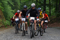 Duathlon - MTB stage Stock Image