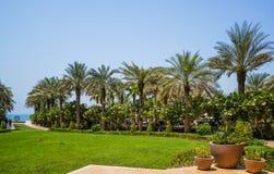 dubai Été 2016 Une oasis verte donnant sur l'hôtel Jumeirah de quatre saisons Image stock