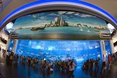 Dubai akvarium Fotografering för Bildbyråer