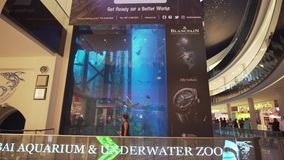 Dubai Aquarium and Under Water Zoo in the shopping mall`s interior Dubai Mall stock footage video. Dubai, UAE - April 09, 2018: Dubai Aquarium and Under Water stock footage