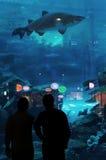 Dubai Aquarium & Underwater Zoo. Located in The Dubai Mall, is the largest suspended aquarium in the world stock image