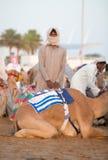 Dubai camel racing club camel and keeper. Dubai camel racing club camel and young keeper stock photo