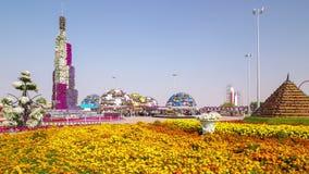 Dubai city magic blooming garden 4k ime lapse stock footage