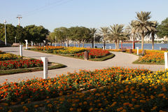 Dubai Creek Park Royalty Free Stock Photos