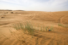Dubai desert Royalty Free Stock Photography