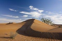Dubai desert Royalty Free Stock Photography
