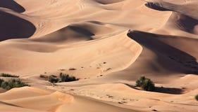 Dubai desert Royalty Free Stock Photos
