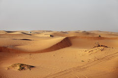 Dubai. Desert driving Stock Images