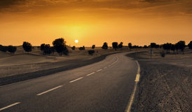 Dubai desert road. With beautiful sandunes and tree royalty free stock photography
