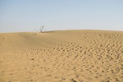 The Dubai Desert with sand formations.  Stock Image
