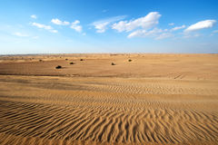 Dubai Desert, United Arab Emirates Stock Photography