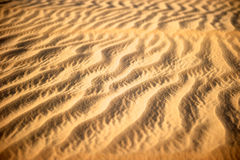 Dubai Desert, United Arab Emirates Stock Photos