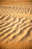 Dubai Desert, United Arab Emirates Royalty Free Stock Photo