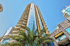 Dubai Förenade Arabemiraten, extremt höga skyskrapor med shoppar på bottenvåningen, en grön palmträd i förgrunden i Royaltyfria Bilder
