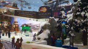 DUBAI FÖRENADE ARABEMIRATEN - MARS 30th, 2014: Alpint skida i Dubai Ski Dubai är ett inomhus skidar semesterorten med 22.500 Arkivfoto