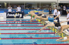 Dubai Fina swimming world cup championship 2012 Stock Photography