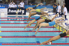 Dubai Fina swimming world cup championship 2012 Royalty Free Stock Photos