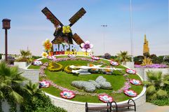 Dubai Flower garden. Dubai tourism stock images
